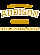 Addison Ladies Performance Blend V-Neck T-Shirt
