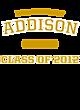 Addison Fan Favorite Heavyweight Hooded Unisex Sweatshirt