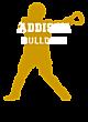 Addison Sport Tek Sleeveless Competitor T-shirt