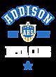 Addison Womens Holloway Electrify Long Sleeve Performance