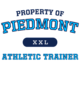 Piedmont Ladies Vintage Game V-Neck Tee