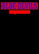 Chenango Forks Central  Sch Champion Reverse Weave Crewneck Sweatshirt