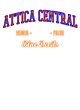 Attica Central Youth Electric Heather Hooded Sweatshirt