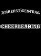 Amherst Central Fan Favorite Ladies Cotton V-Neck T-shirt