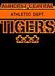 Amherst Central Sport Tek Sleeveless Competitor T-shirt
