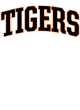 Amherst Central Sport-Tek Long Sleeve Posi-UV Pro Tee