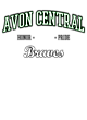 Avon Central Classic Fit Heavy Weight T-shirt
