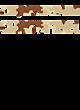 Aliquippa Senior Fan Favorite Heavyweight Hooded Unisex Sweatshirt