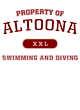 Altoona Ladies Tri-Blend Wicking Fan Tee