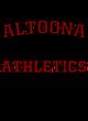 Altoona Fan Favorite Heavyweight Hooded Unisex Sweatshirt