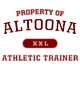 Altoona Tri-Blend Wicking Draft Tee