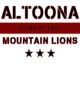 Altoona Women's Classic Fit Heavyweight Cotton T-shirt