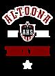 Altoona Youth Heavyweight Sleeve Stripe Hooded Sweatshirt