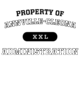 Annville-Cleona Womens Holloway Heather Electrify V-Neck Shirt