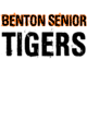 Benton Senior Lightweight Hooded Unisex Sweatshirt