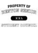 Benton Senior Holloway Ladies Echo Performance Pullover