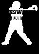 Ainsworth Fan Favorite Heavyweight Hooded Unisex Sweatshirt