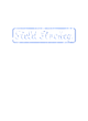 Anacostia Senior Vintage Flame Tri-Blend Hooded T-Shirt