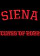 Siena Nike Ladies Core Cotton Long Sleeve T-Shirt