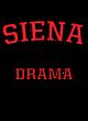 Siena Womens V-Neck Competitor T-shirt