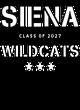 Siena Ladies Kinergy 2 Color Long Sleeve Raglan T-Shirt