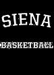 Siena Womens Long Sleeve V-Neck Competitor T-Shirt