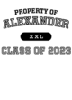 Alexander Holloway Electrify Long Sleeve Performance Shirt