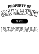 Gallatin Classic Fit Heavy Weight T-shirt