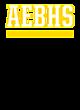 A E Beach Embroidered Vector Briefcase