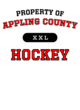 Appling County Ladies' Tri-Blend T-Shirt