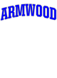 Armwood Holloway Electrify Long Sleeve Performance Shirt