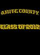 Amite County Champion Heritage Jersey Tee