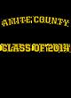 Amite County Sport-Tek Posi-UV Pro Tee
