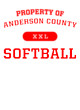 Anderson County Fan Favorite Heavyweight Hooded Unisex Sweatshirt