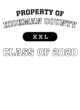 Hickman County Ladies Crossover Tank