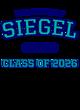 Siegel Fan Favorite Heavyweight Hooded Unisex Sweatshirt
