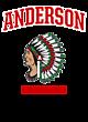 Anderson New Era Ladies Tri-Blend Performance Baseball Tee