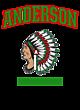 Anderson Fan Favorite Ladies Long Sleeve Cotton T-Shirt