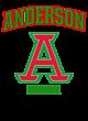 Anderson Fan Favorite Ladies Cotton V-Neck T-shirt