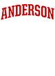 Anderson New Era French Terry Hooded Sweatshirt