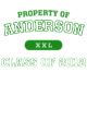 Anderson Youth Competitor T-shirt