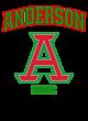 Anderson Ladies Game Long Sleeve V-Neck Tee