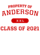 Anderson New Era Tri-Blend Pullover Hooded T-Shirt