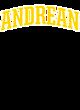Andrean Champion Reverse Weave Short Sleeve Hoodie