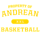 Andrean Bella+Canvas Unisex Tri-Blend T-Shirt