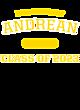Andrean Tri-Blend Ladies Long Sleeve Hooded T-shirt