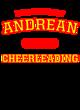Andrean Comfort Colors Heavyweight Ring Spun LS Tee