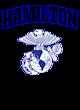 Hamilton Ladies Performance Blend V-Neck T-Shirt