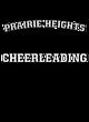 Prairie Heights Vintage Heather Hooded Unisex Sweatshirt