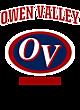 Owen Valley Ladies Game Long Sleeve V-Neck Tee